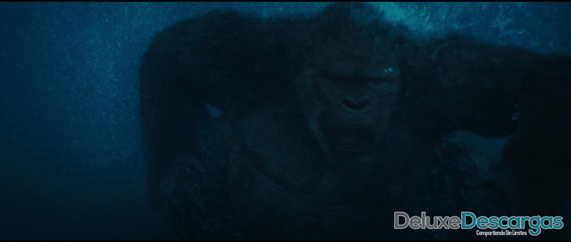 Godzilla vs Kong 1080p (3) min